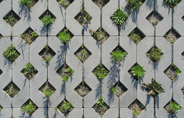 tiles brick floor parking grass