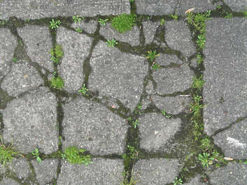 stone brick cracks cracked