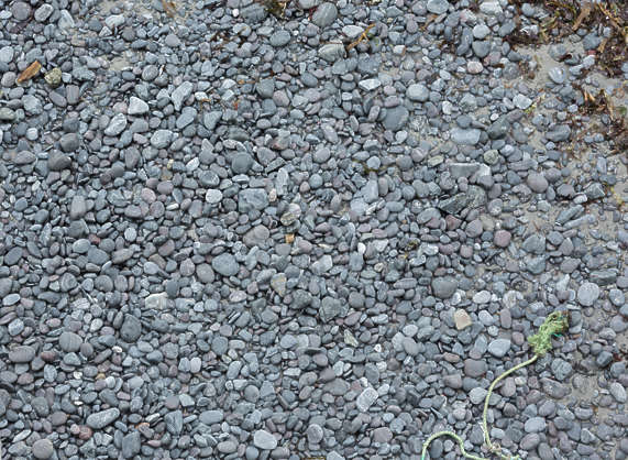 gravel UK pebbles