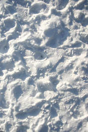snow footsteps tracks