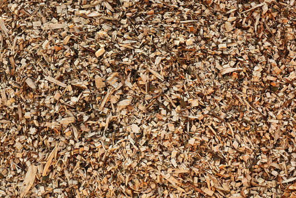 pebbles woodchips chips ground