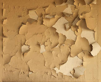 plaster paint peeling cracks crackled