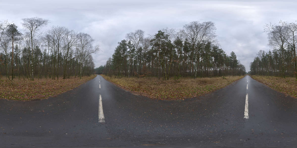 Terms Of Use >> HDR Panorama 063, Empty Road, HDRi light probe