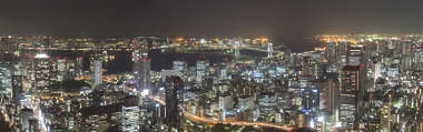 aerial city landscape panorama skyline buildings skyscrapers skyscraper night tokyo japan location: tower