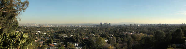 landscape background LA Los Angeles city trees