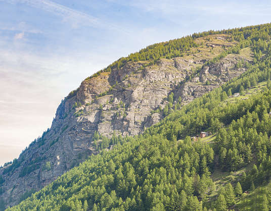 landscape mountain cliff trees rock forest