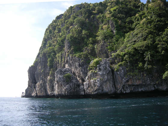 landscape background sea cliffs rock jungle