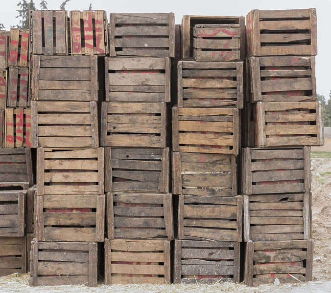 Cargo0101 - Free Background Texture