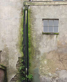 concrete dirty moss rainpipe green window plaster pipe