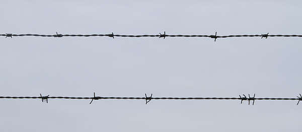 barbed wire barb fence