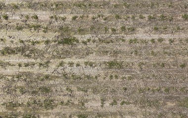 aerial farmland farm sand earth dirt empty weeds weed ploughed plough groove trough plough plow
