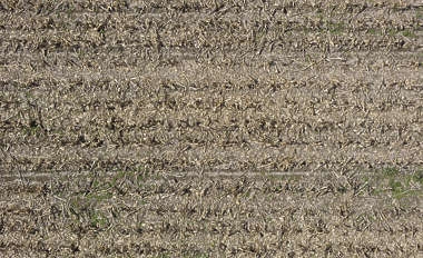 aerial farmland farm sand earth dirt empty corn