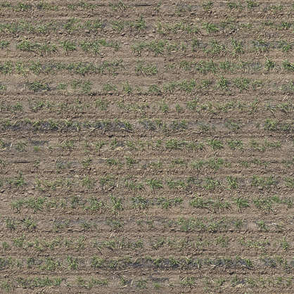 aerial farmland farm land ploughed plough groove trough plough plow crop plants