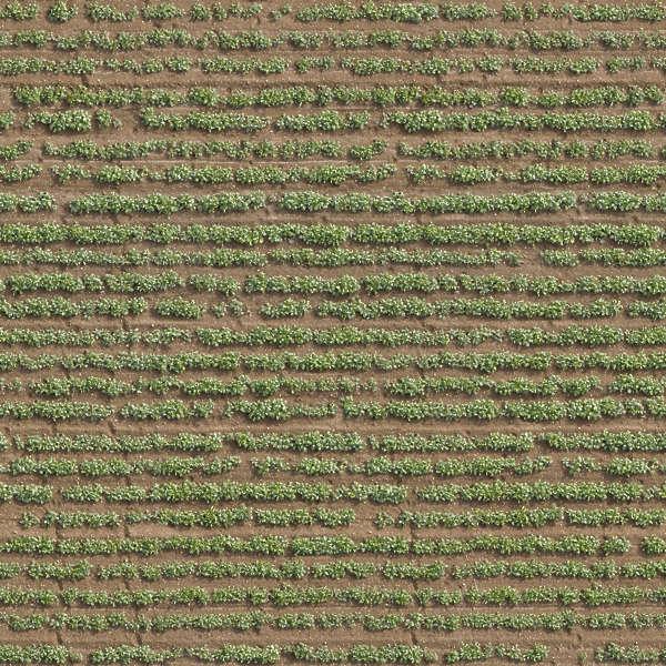 Farmland0008 Free Background Texture Aerial Ground