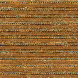 aerial farmland crops crop agave ground sand earth