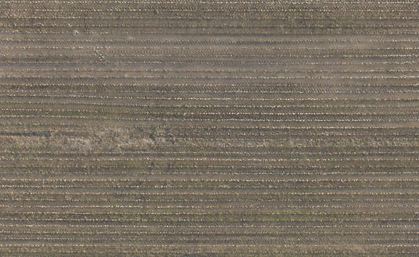 aerial field earth terrain soil crop crops farmland