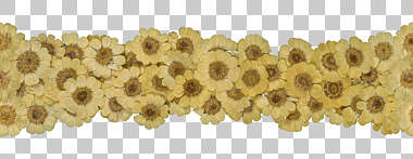 dried flowers pressed flower scrapbooking scrapbook border