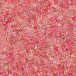 flower background flowers dried filled back scrapbooking cover petals petal pink