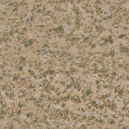 earth ground sand groundcover grass bare