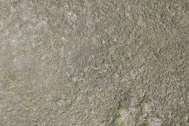 grass dry dead mud soil aerial ground terrain