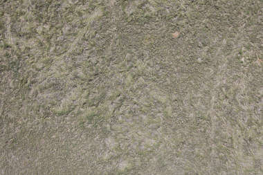 aerial ground terrain grass dead dry short