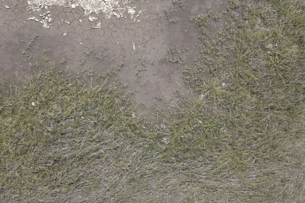 aerial ground terrain grass soil mud