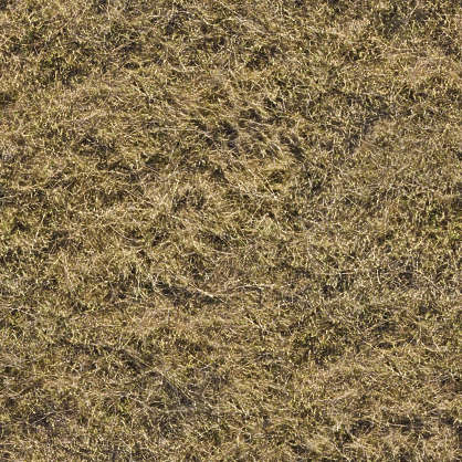 Grassdead0080 Free Background Texture Aerial Grass Dry