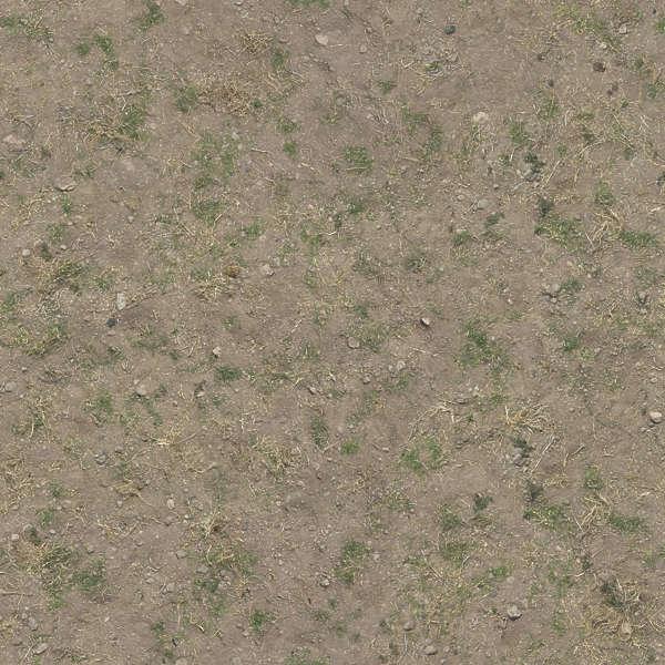 Grassdead0095 Free Background Texture Aerial Soil Sand