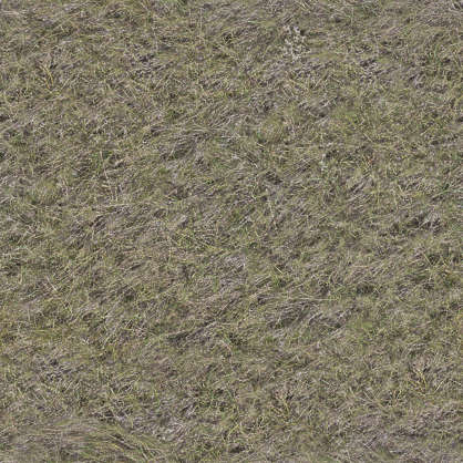 aerial ground terrain grass dead dry