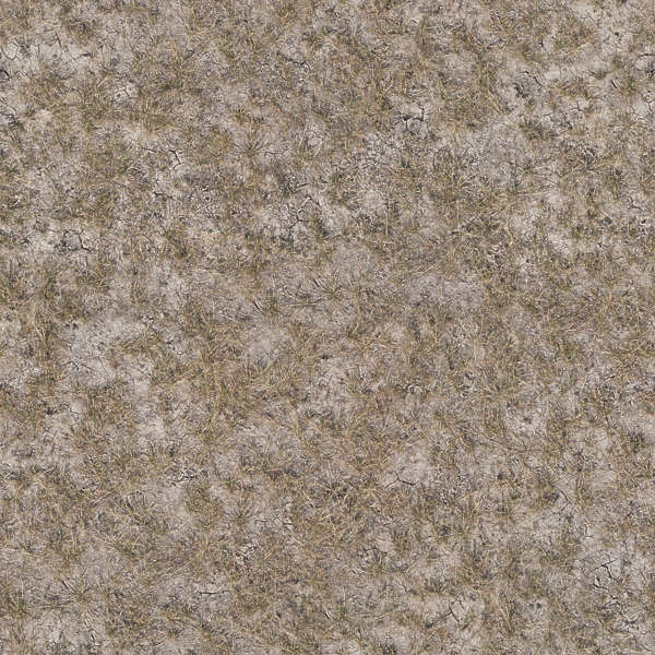 Free Background Texture