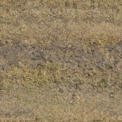 aerial grass dead dry sand