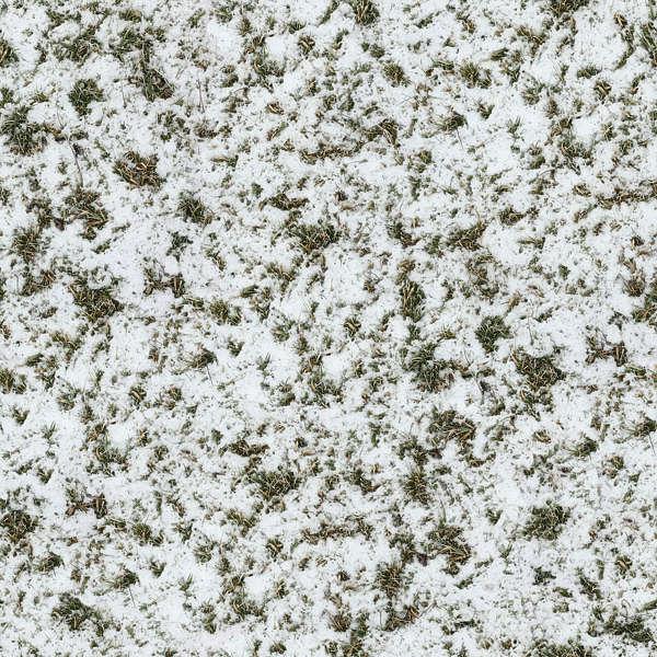 Grassfrozen0047 Free Background Texture Snow Ground