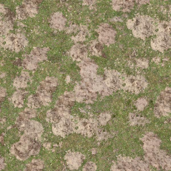 Grass0213 Free Background Texture Grass Mud Sand Mole
