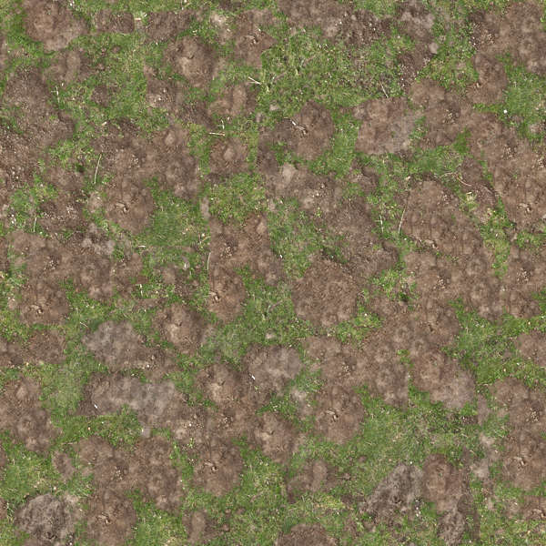 Grass0118 Free Background Texture Grass Mud Sand Mole