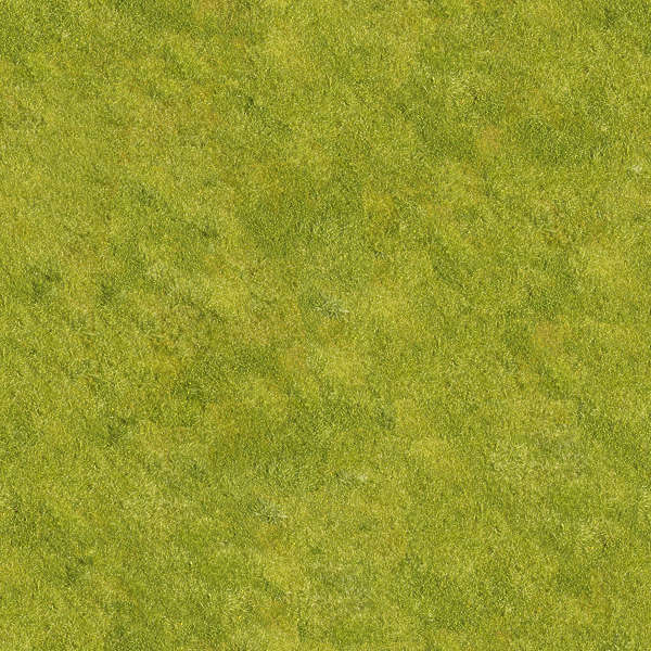 Grass0052 Free Background Texture Grass Short Green
