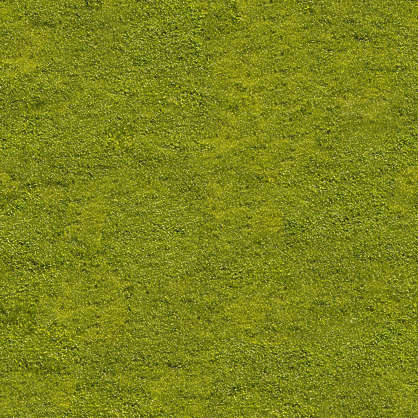Grass0053 Free Background Texture Grass Short Green