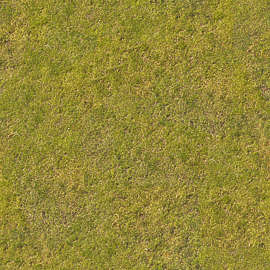 Grass Field Texture With 178 Of 200 Photosets Grass Lawn Texture Background Images Pictures