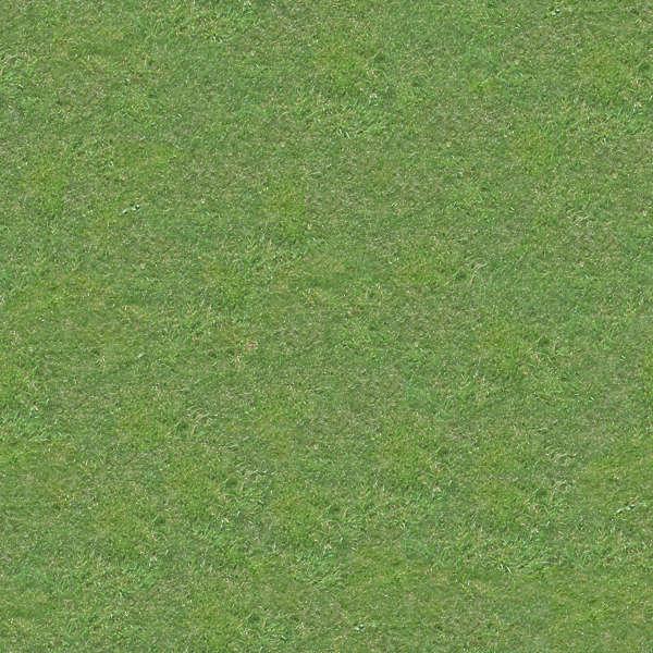 Grass0004 Free Background Texture Grass Short Green