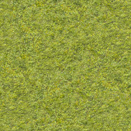 grass texture hd cricket ground 198 of 200 photosets grass lawn texture background images pictures