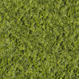 Grass background tile Clipart 178 Of 201 Photosets Texturescom Grass Lawn Texture Background Images Pictures