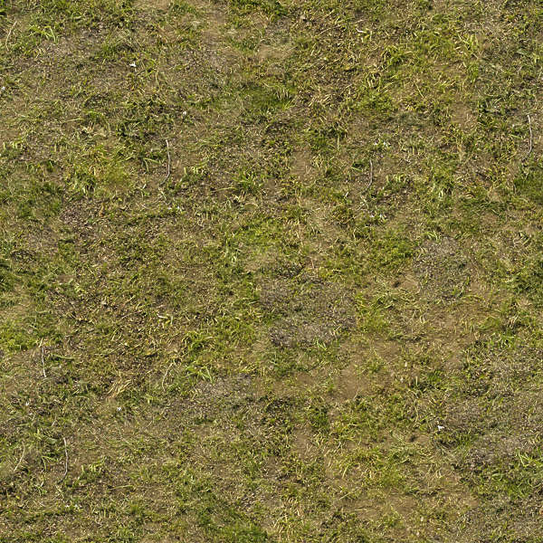 Grass0057 Free Background Texture Grass Sand Ground