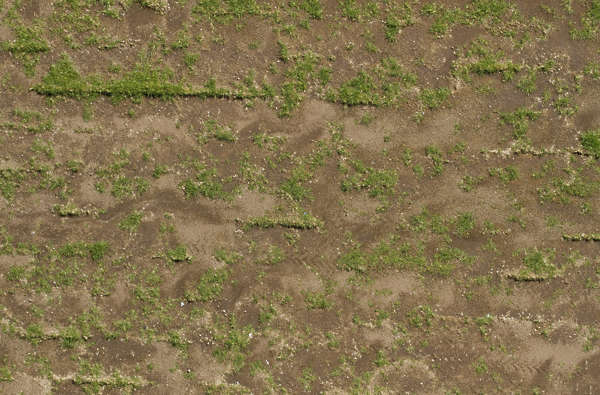 aerial grass short patchy sand ground