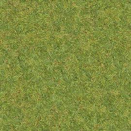 grass texture hd seamless texturescom 198 of 200 photosets grass lawn texture background images pictures