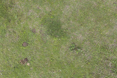 aerial ground terrain grass short