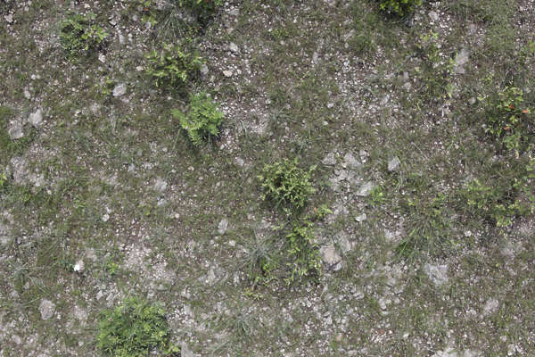 aerial ground terrain grass soil rocks stones