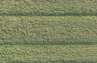 aerial field grass ground terrain short