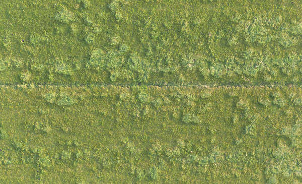 grass field aerial. Plain Aerial Aerial Field Grass Ground Terrain Short In Grass Field Aerial
