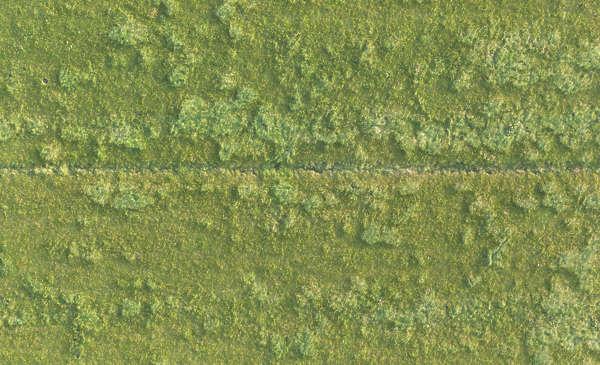 Grass0198 Free Background Texture Aerial Field Grass