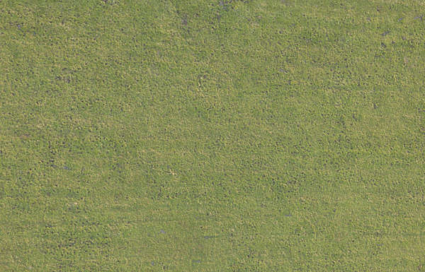 grass field aerial. Beautiful Aerial Aerial Field Grass Ground Terrain Short For Grass Field Aerial A