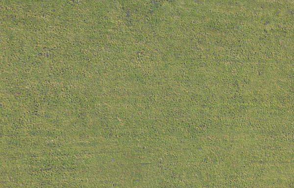 Grass0202 Free Background Texture Aerial Field Grass